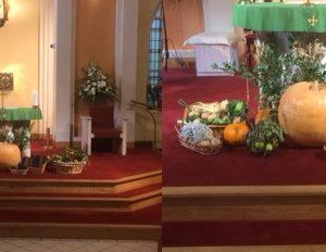 Harvest Mass 2016 – Carbury Parish